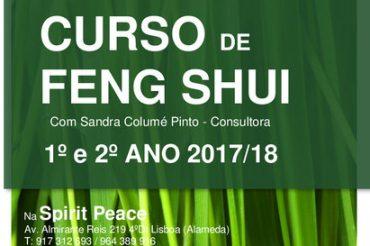 Curso Feng Shui 1º e 2º Ano