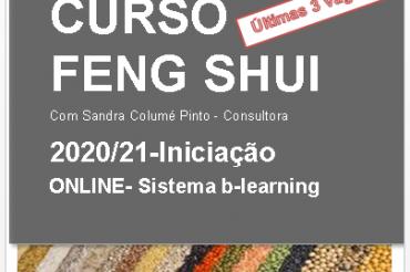 FENG SHUI – INICIAÇÃO- CURSO ONLINE-Nova data, novo horário, últimas 3 vagas!